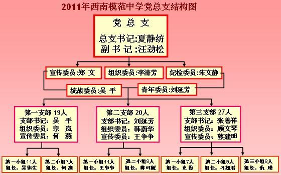 党总支组织结构图 - 内容